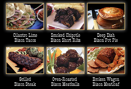 All Bison Meat Recipes